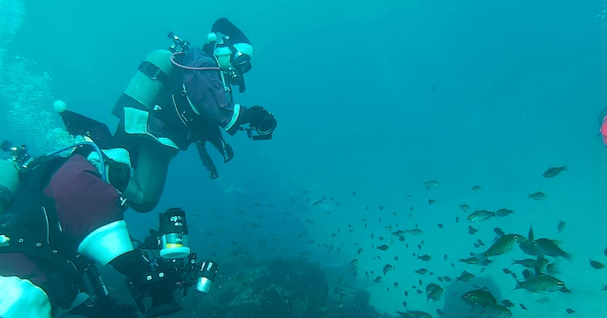 GoPro(ゴープロ)ダイビング!伊豆のダイビングスポット4選