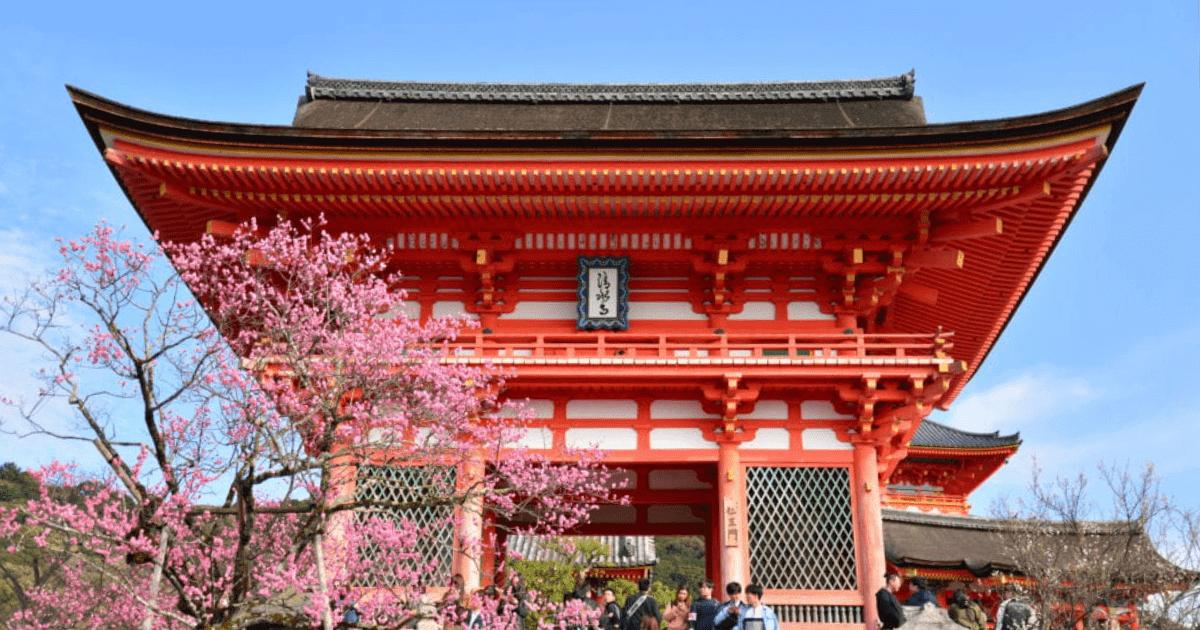 GoPro(ゴープロ)を持ってインスタ映えスポットへ【京都旅】