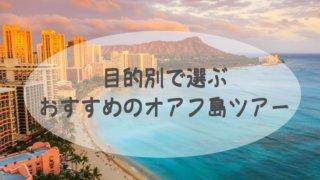 目的別3選!おすすめのオアフ島観光ツアー