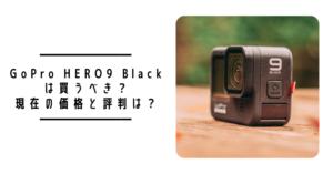 GoPro HERO9は買うべき?2021年3月現在の価格と評判は?